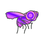 Fly Purple