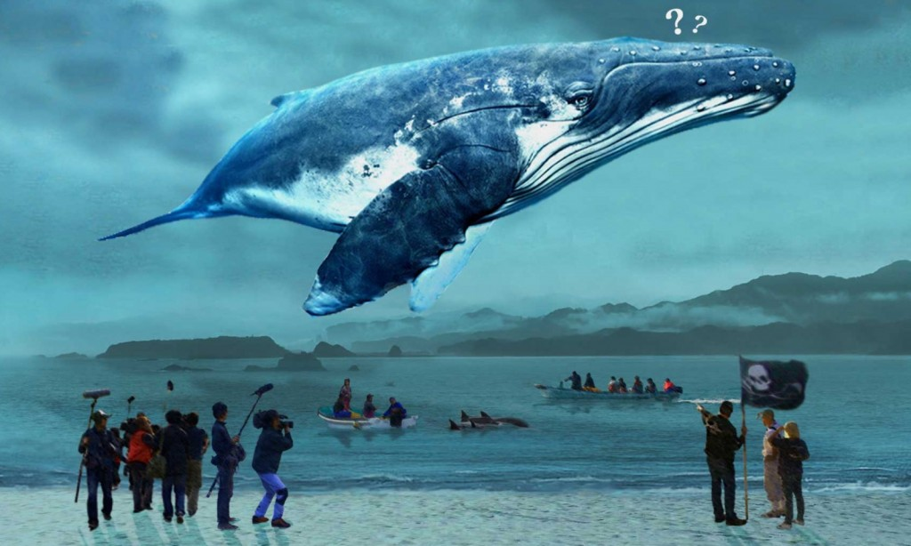 05_《鯨世爭議》繼奧斯卡最佳紀錄片血色海灣後再次探究日本捕鯨文化